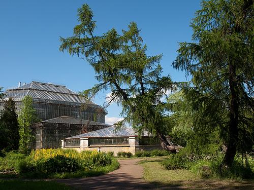 Information About Saint Petersburg Parks And Gardens Botanical Garden